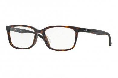 RAY-BAN RB5319D F-RAY 5319D-5211(55CN)